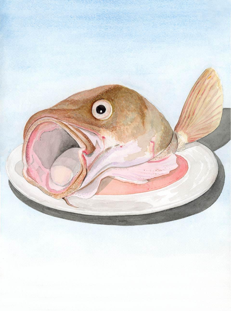 Illustration Kent Laursen Diverse teknikker og farver - akvarel